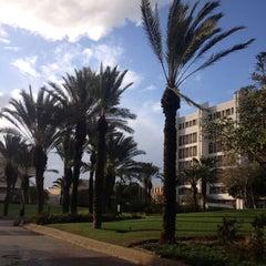 Photo taken at Tel Aviv University   אוניברסיטת תל-אביב by Connor on 1/9/2013