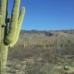Photo taken at Saguaro National Park by Dante W. on 3/6/2013