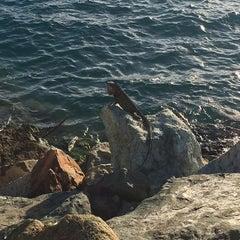 Photo taken at Bolongo Bay Beach Resort by Alexey K. on 1/10/2015