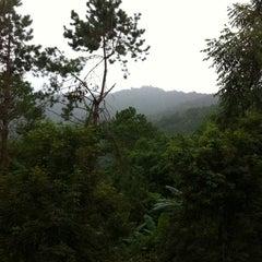 Photo taken at Doi Tung Lodge by Pinyada T. on 9/15/2012