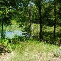 Photo taken at Jacksonville Arboretum & Gardens by Amanda W. on 7/10/2013