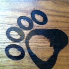 Photo taken at Lazy Dog Restaurant & Bar by Debby C. on 4/14/2013
