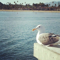 Photo taken at Stearns Wharf by Raphael F. on 11/4/2012