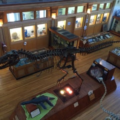 Photo taken at Musée Redpath Museum by Laura B. on 6/19/2015
