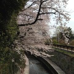 Photo taken at 哲学堂公園 by Akiko on 4/1/2013