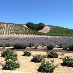Photo taken at Niner Wine Estates by Stephanie S. on 7/9/2014