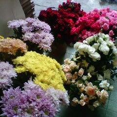 Photo taken at Pasar Burung Kota Malang by Shavira Y. on 10/30/2012