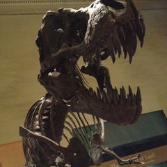 Photo taken at Dinosaurs/Hall of Paleobiology Exhibit by Dale C. on 5/18/2013