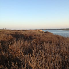 Photo taken at Bolsa Chica Wetlands by Jeff T. on 9/29/2012