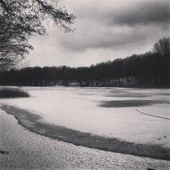 Photo taken at Jagdschloss Grunewald by Hanno H. on 2/21/2013