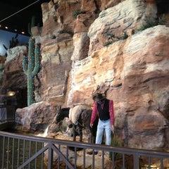 Photo taken at Wild Wild West Casino by Bonnie on 2/13/2013