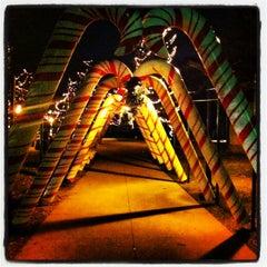 Photo taken at Bronson Park by Bob F. on 12/23/2012