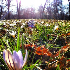 Photo taken at Parco Ducale Parma by Vinicius R. on 3/3/2013