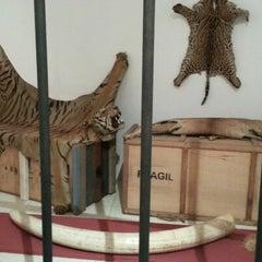 Photo taken at Museo de Ciencias Naturales de Caracas by Alvaro F. on 11/3/2012