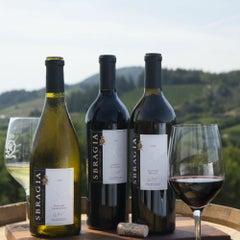 Photo taken at Sbragia Family Vineyards by Sbragia Family Vineyards on 7/13/2015