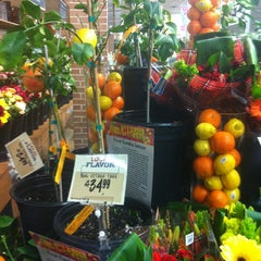 Photo taken at Central Market by Alfred M. on 1/10/2013