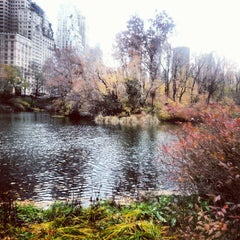 Photo taken at Central Park Duck Pond by Michael N. on 11/19/2012