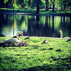 Photo taken at Boston Public Garden by Alice P. on 5/16/2013