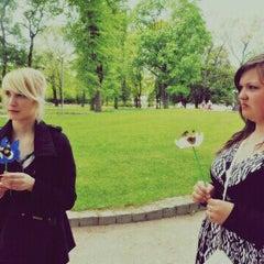 Photo taken at Žurku koks by Kitija Z. on 9/18/2012