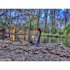 Photo taken at Parque de Ferrera by Txusin on 4/10/2014