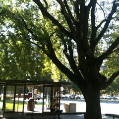 Photo taken at Sac State: Bus Terminal by Meisha L. on 9/27/2012
