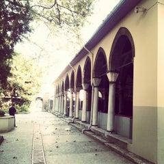 Photo taken at Yeni Cuma Camii by (pd) Tunahan Ç. on 10/26/2012
