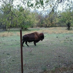 Photo taken at Chickasaw National Recreation Area by Shannon B. on 11/11/2012