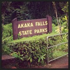 Photo taken at Akaka Falls State Park by Spursfanhawaii on 7/4/2013