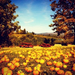 Photo taken at Boa Vista Orchards by Jason T. on 10/20/2012