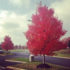 Photo taken at Four Points by Sheraton Columbus Ohio Airport by Yianni G. on 11/8/2013