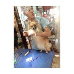 Photo taken at Cartimar Pet Center by Kelly C. on 7/4/2015
