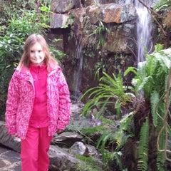 Photo taken at Botanická zahrada by Kateřina Z. on 11/24/2013