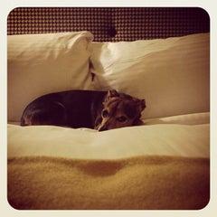 Photo taken at Citizen Hotel by Bret on 12/8/2013