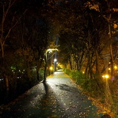 Photo taken at 양재천 산책로 (Yangjaecheon Trails) by Hyunseung Y. on 11/11/2012