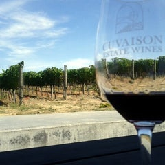 Photo taken at Cuvaison Estate Wines by Fabio S. on 9/17/2011