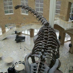 Photo taken at Fernbank Museum of Natural History by Daniel R. on 12/4/2011