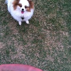 Photo taken at Sun Vista Park by Celine B. on 11/18/2011