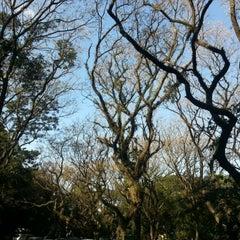 Photo taken at Parque Alfredo Volpi by Robert B. on 8/4/2012