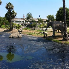 Photo taken at La Brea Tar Pits by petershin on 6/18/2012