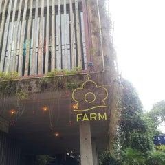 Photo taken at Farm by Mafê T. on 1/10/2013