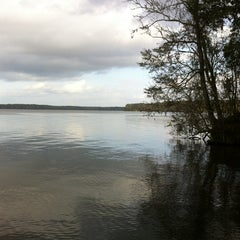 Photo taken at Lake Talquin State Park by Jessica S. on 1/1/2013