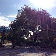 Photo taken at Staybridge Suites San Antonio Sea World by Juan Pablo M. on 11/14/2012
