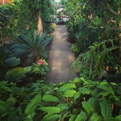 Photo taken at Matthaei Botanical Gardens by Elizabeth on 1/5/2013