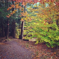 Photo taken at Ricketts Glen State Park by Aaron C. on 10/27/2012