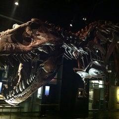 Photo taken at Royal Tyrrell Museum of Paleontology by Dartanion J. on 7/3/2013