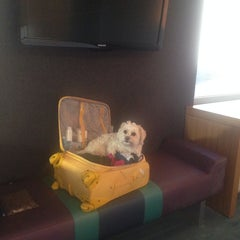 Photo taken at Aloft Winchester by Claire B. on 3/26/2014