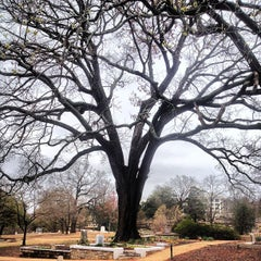 Photo taken at Oakland Cemetery by Maurice on 3/24/2013