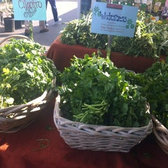 Photo taken at Irvine Farmers Market by Erika M. on 4/14/2012