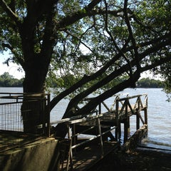 Photo taken at Ilha das Flores by Leandro B. on 1/26/2013