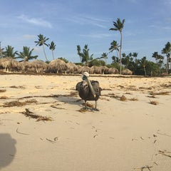 Photo taken at Majestic Beach by F_ I. on 5/10/2015